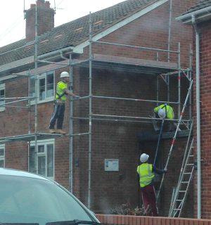 Ladder Loonie!!