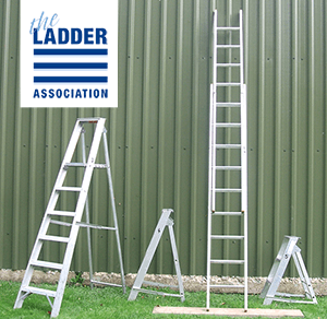 ladders-pic